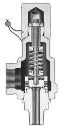 Speciality Safety Valves Image